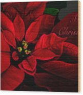 Red Poinsettia Merry Christmas Card Wood Print