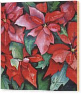Red Poinsettias Wood Print