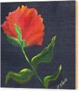 Red Poppie Wood Print
