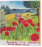 Red Poppies Coastal Maine Island June Garden North Haven  Wood Print