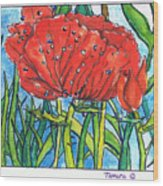 Red Poppy 1 Wood Print
