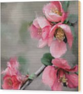 Red Quince Wood Print