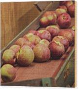Red Ripe Macintosh Apples Wood Print