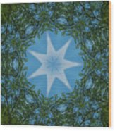 Red River Star Kaleidoscope 1 Wood Print