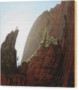 Red Rock At Zion Wood Print