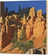 Red Rock Canoyon At Sunset Wood Print