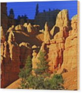 Red Rock Canoyon Moonrise Wood Print