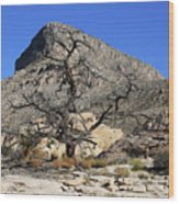 Red Rock Canyon Nv 1 Wood Print