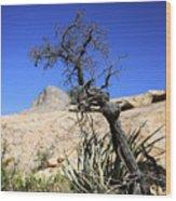 Red Rock Canyon Nv 10 Wood Print