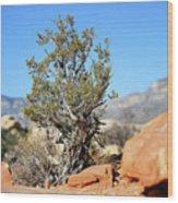 Red Rock Canyon Nv 3 Wood Print