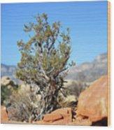 Red Rock Canyon Nv 4 Wood Print
