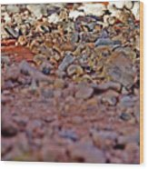 Red Rock Canyon Stones 1 Wood Print