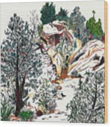 Red Rock Children's Discovery Wood Print