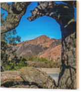 Red Rock Cliffs Wood Print