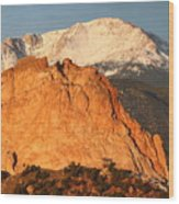 Red Rock Wood Print by Eric Glaser