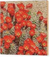 Red Rock Flowers Wood Print