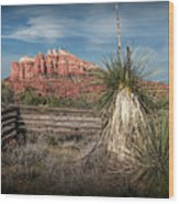 Red Rock Formation In Sedona Arizona Wood Print