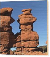 Red Rock Formation  Wood Print