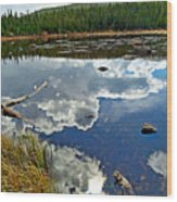 Red Rock Lake Fall Study 2 Wood Print