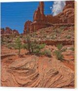 Red Rock Park Avenue Wood Print