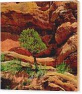 Red Rocks  Colorado Wood Print