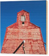 Red Roof Wood Print