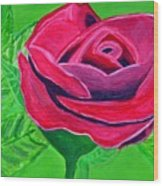 Red Rose 2 Wood Print