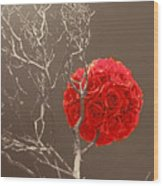 Red Rose Ball In Field Of Gray Wood Print