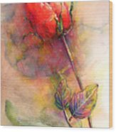 Red Rose From The Past Wood Print