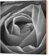 Red Rose In Infrared Wood Print