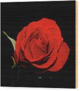 Red Rose On Black 2 Wood Print