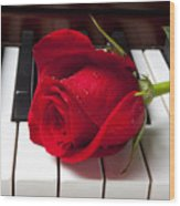 Red Rose On Piano Keys Wood Print by Garry Gay