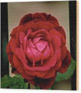 Red Rose  V2 Wood Print