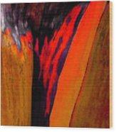 Red Running II Wood Print