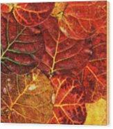 Red Sea Grapes By Sharon Cummings Wood Print