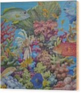 Red Sea Reef Wood Print