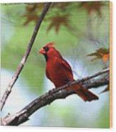 Red Sentry Wood Print