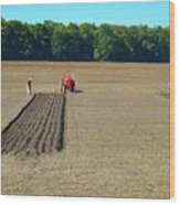 Red Shirt Red Tractor  Wood Print