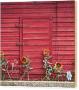 Red Sided Wall Wood Print