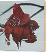Red Silk Cotton Flower Wood Print