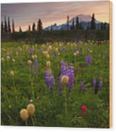 Red Sky Meadow Wood Print