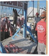 Red Snapper Catch Wood Print