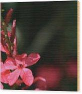 Red Star Wood Print