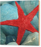 Red Starfish Wood Print