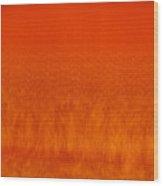 Red Stone 2 Wood Print