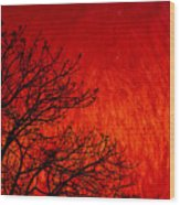 Red Storm Wood Print