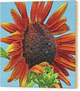 Red Sunflowers-adult And Child Wood Print