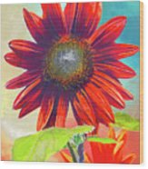 Red Sunflowers At Sundown Wood Print