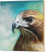 Red Tail Hawk  Wood Print by Crispin  Delgado