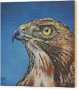 Red-tailed Hawk......honor Wood Print